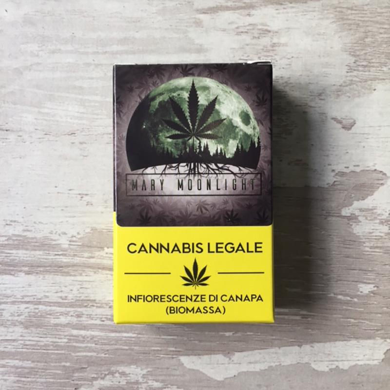 negozio cannabis firenze