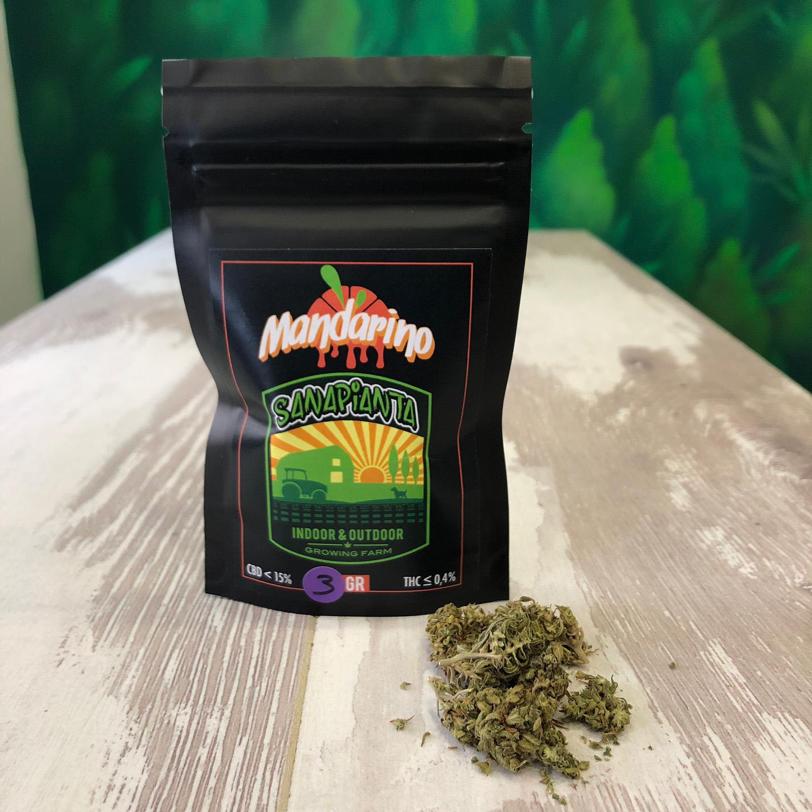 cannabis firenze